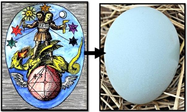 divine-egg
