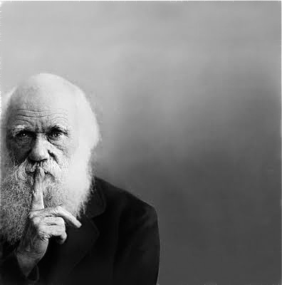 darwin-shh