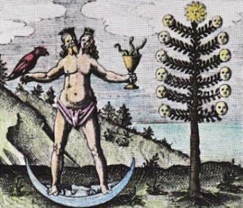 Postgender-androgyny-and-hermaphroditism-3