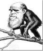 Scienza Proibita: Dio contro Darwin (L'evoluzione darwiniana non rispetta il metodoscientifico)
