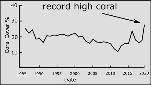 reef-chart